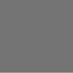SERWETKI JEDNOBARWNE 33x33 cm CIEMNY POPIEL